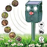 Solar Katzenschreck Ultraschall Abwehr, Wasserdichter Tiervertreiber Repeller, Ultraschall/Blinklicht/Sound/Solar/USB Powered Cat Repellent, 4 Modus Einstellbar für Katzen, Vögel, Schädlinge (Grün)