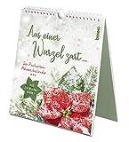 Aus einer Wurzel zart …: Der Postkarten-Adventskalender mit 24 Winterblüten