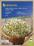 Bio Keimsprossen verschiedene Sorten Alfalfa Radies Brokkoli Weizen Rauke Linsen Zwiebel (Alfalfa)