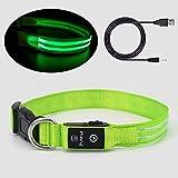 Pumila LED Hundehalsband Leuchtendes Hundehalsband USB Wiederaufladbare 100% wasserdichtes Einstellbare für Kleine Mittlere und Große Hunde - Grün - XS