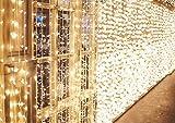 600 LEDs Lichterkette 6m * 3m IDESION 8 Betriebsarten LED Lichtervorhang für Innenausstattung Außenbereich Schlafzimmer Hochzeit Weihnachten Party (Warmweiß)