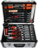 FAMEX Werkzeugkoffer Set Top Qualität, 729-94