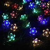 Märchen Lichterketten LED Innen Pfirsichblüte Garten Weihnachtsbaum Party Dekoration Lichterketten Batterie Multicolor 10m100 LEDs