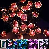 LED Bunt Lichterkette Blumen,4M 40er USB & Batterie LED Blume Lichterkette Innen, 16 Farben Lichterkette für Zimmer mit Fernbedienung für Garten, Bäume, Terrasse, Weihnachten, Hochzeiten, Partys