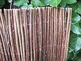 Pflanzen-Versand Weidenzaun Weidenmatte Sichtschutz versch. Größen (75 x 300cm)
