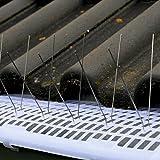 Dachrinnenschutz aus Kunststoff - Profi Laubschutz zuverlässig gegen Verstopfen von Regenrinnen - Laubfangstreifen mit einfacher CLIP Montage & Verbindung - Länge wählbar, Länge:72 Vogelabwehrspieße