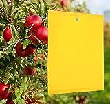 Y.A. LOTUS 50 Stück Gelbtafeln Klebrige Insektenfallen, Premium Gelbsticker Fliegenfalle, Gelbstecker Papiere für Gegen Trauermücken, Raupenleim, Minierfliegen und weiße Fliegen