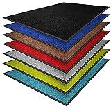 casa pura® Premium Fußmatte in attraktiver Optik | Schmutzfangmatte in vielen Größen | türkis | 60x90cm