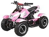 Actionbikes Motors Miniquad Kinder ATV Cobra 49 cc Pocketquad 2-takt Quad ATV Pocket Quad Kinderquad Kinderfahrzeug (Pink Weiß)