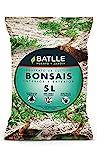 Sustratos Bonsais Substrat 5l - Batlle