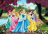 1art1 Disney Prinzessin - Aschenputtel, Schneewittchen, Rapunzel und Prinzessinnen, Blumenweg Fototapete Poster-Tapete 160 x 115 cm