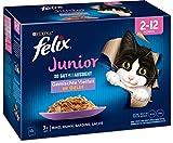 FELIX So gut wie es aussieht Junior Kittenfutter nass in Gelee, Sorten-Mix, 6er Pack (6 x 12 Beutel mit 85g)