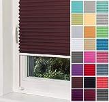 Home-Vision Premium Plissee Faltrollo ohne Bohren mit Klemmträger / -fix (Braun, B25cm x H100cm) Blickdicht Sonnenschutz Jalousie für Fenster & Tür