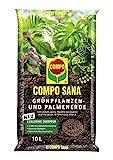 COMPO SANA Grünpflanzen- und Palmenerde mit 12 Wochen Dünger für alle Zimmer- und Balkonpflanzen sowie Palmen und Farne, Kultursubstrat, 10 Liter