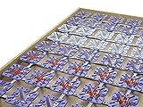 froli Star Mobil, Grundpaket, Feder Clip Bettsystem Lattenrost, variierbarer Härtegrad, 80 x 200 cm