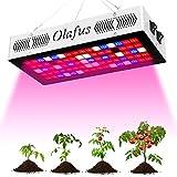 Olafus Pflanzenlampe LED, 300W Pflanzenlicht, Pflanzenleuchte Vollspektrum, LED Grow Light IR Rot Blau Pflanzenlicht mit Daisy-Chain Funktion, Wachstumslampe für Gemüse Blumen