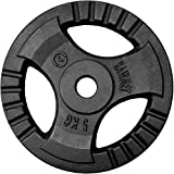 Hantelscheibe Gusseisen Platte Rad KAWMET 5kg