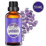 Homasy 50ml Lavendelöl für Aroma Diffuser, 100% naturreines ätherisches Lavendelöl, arbeitet mit Diffusoren, Lufterfrischern oder Luftbefeuchtern