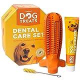 Natural Dog Treats Hundezahnbürste und Zahnpasta mit Rindfleischgeschmack, Hunde Zahnpflege-Set Kauspielzeug, 100% Natürlich Weichem Silikon