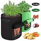 AivaToba Pflanzen Wachsen Taschen,2 Pack Kartoffelsack (10 Gallon + 7 Gallon) Vliesstoff Atmungsakti Kartoffelturm mit Griffen und Sichtfenster Klettverschluss für Tomaten,Blumen,Pflanzen Grün