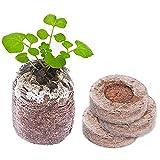 Kokos Quelltabletten mit Nährstoffen: 60 Premium Quelltabs aus Anzuchterde torffrei, ohne Pikieren - Kokoserde gepresst zur Pflanzen Anzucht, Anzucht Erde Kokos, Anzuchterde für Stecklinge (Menge 10)