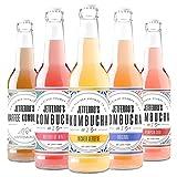 Premium Bio Kombucha 6 x 330 ml Probier Mix mit lebenden Bakterienkulturen auf Grüntee Basis von JETFERRO'S ® ⫸ Gering in Zucker   Kalorienarm   Roh   Natürlich reichhaltig