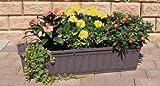 Alpfa Blumenkasten 60 cm anthrazit mit Wasserspeicher Made IN Germany