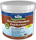 Söll  11604 TeichschlammEntferner - Gegen organischen Schlamm, trübes Wasser und unangenehme Gerüche im Gartenteich - 500 g