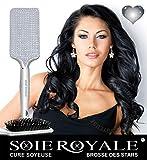 Haarbürste der Stars, Strass, silberfarben, glatt, mit Glanz, ultraleicht, antistatisch, rutschfester Griff, Nano-Thermoseide, Royale Bio-Kur 15 ml gratis