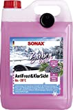 SONAX 01315000 AntiFrost&KlarSicht Scheibenreiniger Zirbe – 20°C