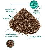 Jasker´s Bambusdünger | für alle Bambussorten | mit extra Magnesium - für kräftig grüne Bambusarten (Bambusdünger, 1,5 Kg)