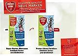 Bayer Ameisen Streu- und Gießmittel 1kg Vorteilspackung (2x500g)