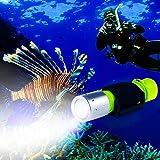 BlueFire Tauchlampe, 1200LM XM-L2 LED Tauchen Taschenlampe, Professionelle Helle Wasserdicht Sicherheit Unterwasser Lampe mit Handschlaufe