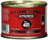 Kyknos doppelt konzentrierte Tomatenpaste 28-30% - 70g Dose (1 x 70 g)