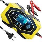 Yomao Autobatterie Ladegerät 6A 12V/3A 24V Vollautomatisches Batterie-Ladeerhaltungsgerät mit LCD-Bildschirm Batterieladegerät Kompatibel für Blei-Säure,Lithium, LifePO4 (Batterien von 6Ah-120Ah)
