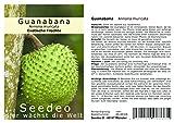 Seedeo® Guanabana Annona muricata 13 Samen
