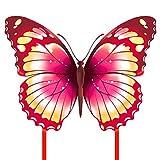 Mint's Colorful Life Schmetterling Drachen flugdrachen für Kinder und Erwachsene (Rosa)