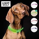 riijk LED Leuchthalsband Hund extra stark Leuchtend   Super lang haltbar durch Lichtleiter-Technologie   regenfest   Leuchthalsband Hund Langhaar und Kurzhaar   USB wiederaufladbar