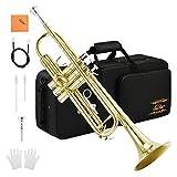 Eastar ETR-380 Bb Trompete mit Koffer Mundstück Handschuhe Reinigungsanzug Reinigungstuch, Gold