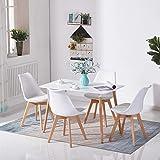 H.J WeDoo Rechteckig Esstisch Buchenholz für 4-6 Stühle Esszimmertisch Küchentisch MDF Weiß 110 x 70 x 73 cm (Nur Tisch)