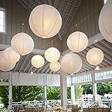 10 Stücke Papierlaterne Laterne Deko Feier Lampions Papierlampen mit 10er Mini LED Lichter (Weiß Lampion + Warmweiß Mini Led-Ballons Lichter, 15cm)