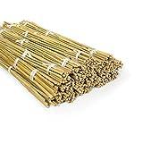 casa pura Bambusstäbe Bahia in Gärtner-Qualität | Bambus Rankhilfe Pflanzenhalter Pflanzstab Rankstab | Verschiedene Längen und Sets (90 cm Länge, 20 Stück)