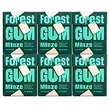 FOREST GUM Minze   Plastikfreies Kaugummi mit Minz-Geschmack   Pflanzliche Zutaten   ohne Zucker   Vegan   6 x 20 Gramm