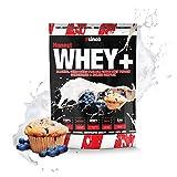 sinob Honest Whey Protein - Blaubeere Muffin - 1 x 1000 g. 12,5% Isolate Anteil. Instant lösliches Eiweißpulver mit BCAA & EAA 'Hergestellt in Deutschland'