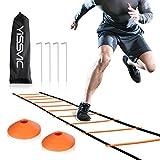 Yissvic Sport Trainingsleiter Dauerhafte Fußball Koordinationsleiter 6m 12 Rungs Inklusive Markierungshütchen, Erdnägel und Tasche Orange MEHRWEG