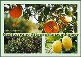 Zitruspflanzendünger, Zitronen/Orangendünger 1,5 Kg Original Mediterrano