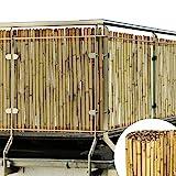 Sol Royal Sichtschutz Bambus Zaun Massiv 100x250cm (HxB) SolVision B38 Bambusmatte Premium - Bambusstangen als Sichtschutzmatte Natur mit dickem Bambusrohr