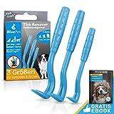 Bluepet® 3 Größen Set Zeckenhaken Zeckenentferner für Hund, Katze & Pferd   Zeckenhebel zum Zeckenschutz   Ergänzung zu Zeckenzange, Zeckenhalsband, Zeckenmittel, Zeckenpinzette