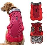 Idepet Hundebekleidung für den Winter, warm