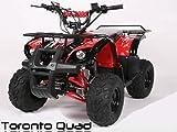 Toronto 125cc RG 7' Automatik + RG | MIDI QUAD (Rot)
